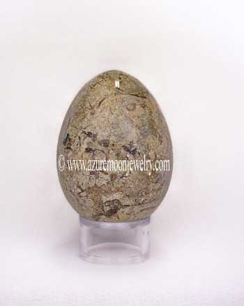 Nummulite Oceanic Fossil Stone Egg With Stand